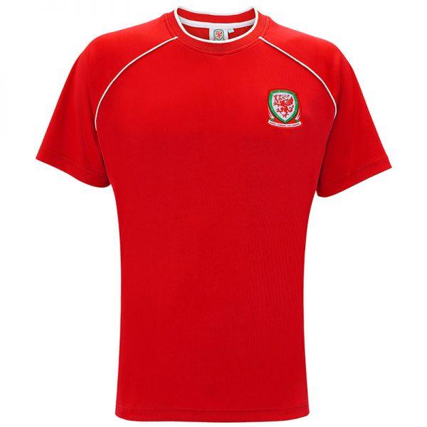 Wales adults t-shirt
